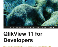 qlikview11fordevelopersbook